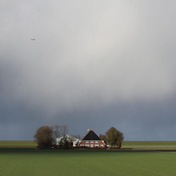 Nieuwebildtdijk farms