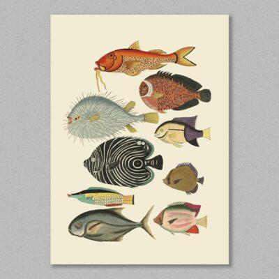 fish 20 poster