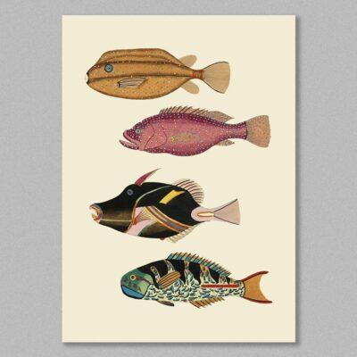 fish 22 poster