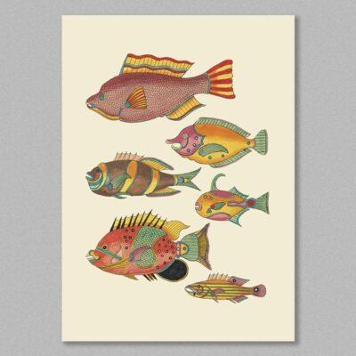 fish 24 poster