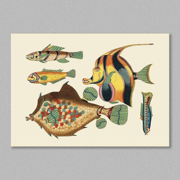 fish 27 poster