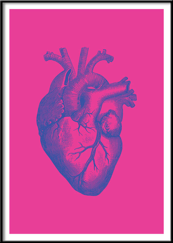 anatomy heart posters