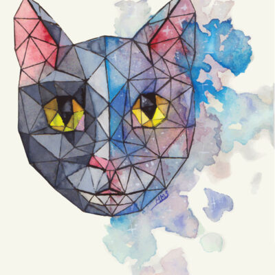 Fusion Galaxy Cat - Mirte Stamkot