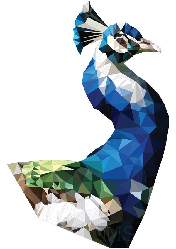 Low Poly Peacock - Mirte Stamkot