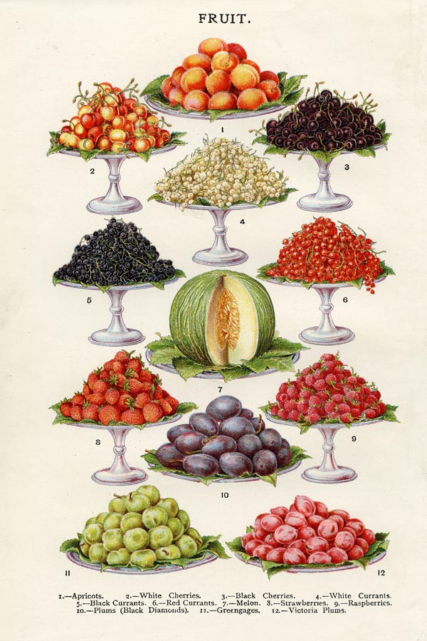 mrs beetons fruit poster