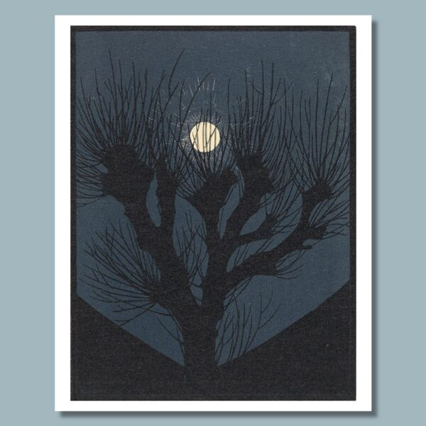 maannacht door julie de graag