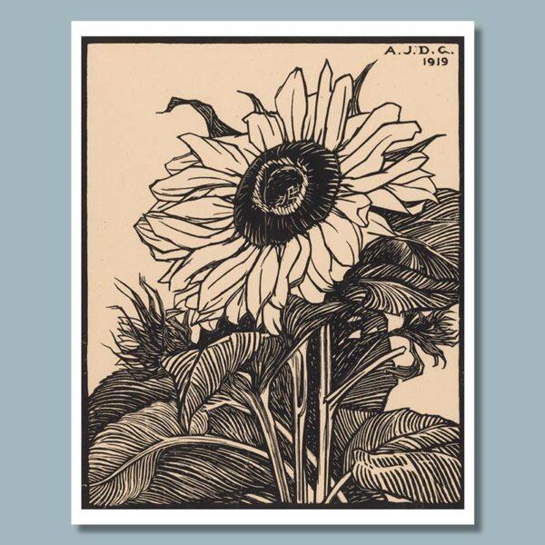 zonnebloom - julie de graag