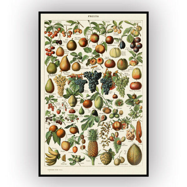 fruits poster with yellow background