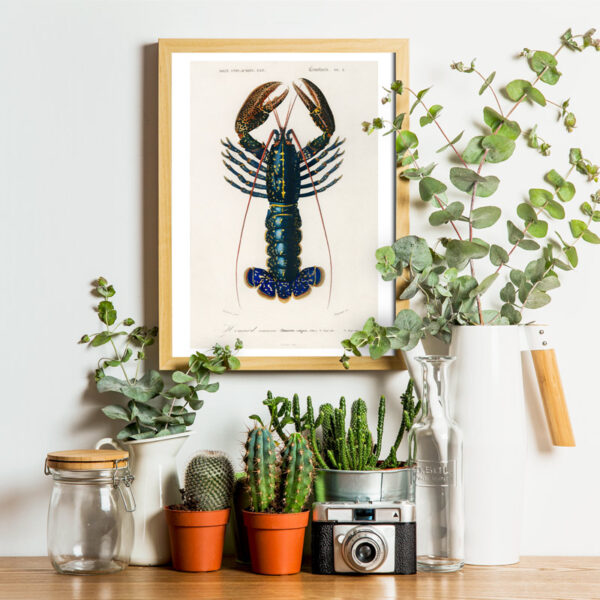 Lobsters poster