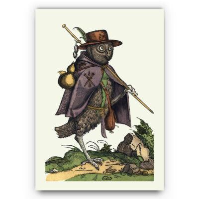 Uil illustratie poster